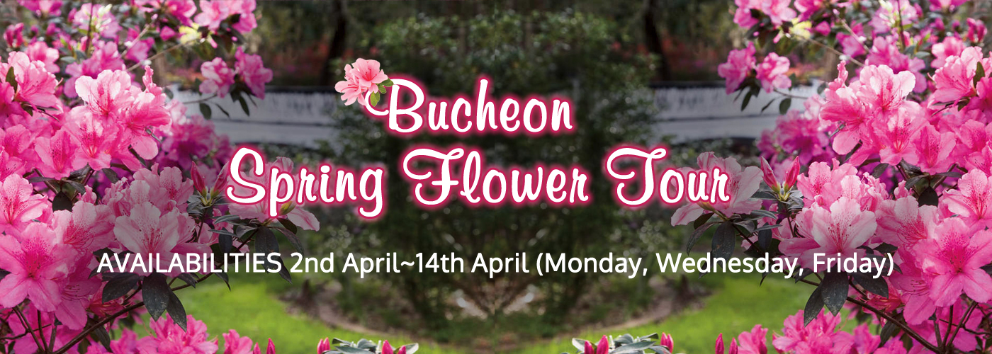 Bucheon Spring Flower Tour info